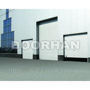 Промышленные ворота Дорхан серии ISD01 фото