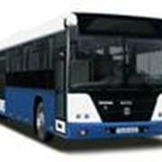 Запчасти к автобусам ГолАз фото