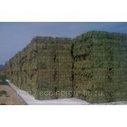 Подложка для зерна сена