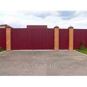 Ворота и калитка из профлиста фото