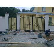 Ворота распашные с элементами ковки фото