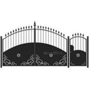 Ворота и калитка: Арка, модель 006 фото