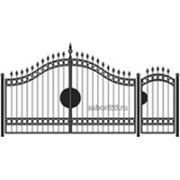 Ворота и калитка: Элит, модель 001 фото