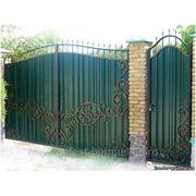 Ворота и калитки из профлиста с коваными элиментами. фото