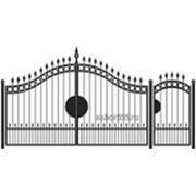 Ворота и калитка: Элит, модель 003 фото