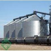 Силосные зернохранилища промышленные фото