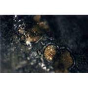 Карбонатный минерал фото