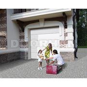 Гаражные ворота RSD01S-1/1 Б размер 2500x2125 фото