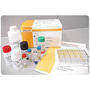 Тест-системы иммуноферментные фото
