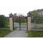 Заборы и ворота кованые