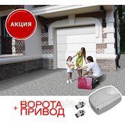 Ворота гаражные секционные DoorHan 2,5 х 2,125 фото