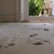 Химическая чистка ковров и ковровых покрытий фото