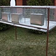 Клетка для кроликов 4-1 фото