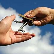 Организация сдачи объектов недвижимости в аренду