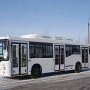 Автобусы городские НЕФАЗ-5299-0000030-32 фото