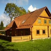 Строительство домов из отесанных бревен фото