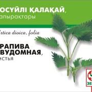 Фиточай Крапива-Зерде листья фото