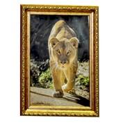 Пластиковая рамка 10х15 модель u 281-06 состаренное золото фотоальт фото