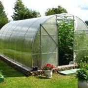 Поликарбонат парниково-тепличный 2-ая защита. фотография
