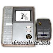Черно-белый видео домофон EPLUTUS EP-2283 с 4 дюймовым монитором и антивандальной вызывной панелью. фото