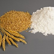 Мука пшеничная грубого помола фото