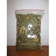 Лекарственная трава Адонис фото