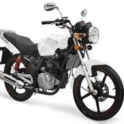 Мотоцикл CF Moto Leader 150 фото