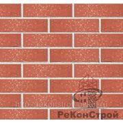Кирпич облицовочный Голицынский, темно-красный, винтаж, одинарный, 1 НФ, F-100. Утолщенная стенка 20 мм! фото