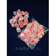 Лепестки роз розовые фото