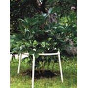 Кустодержатель (D 60 см, Н 70 см), 4 ножки, белый фото