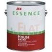 Ace Essense Flat latex house paint Фасадная краска 5 галлонов (18,9 л) Эйс фото
