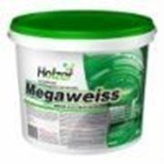 Holzer Megaweiss Латексная краска 5 л. (Хольцер) фото