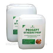 PROSEPT ОГНЕБИО PROF - огнебиозащитный состав 2-ая группа фото