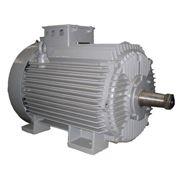 Электродвигатели низковольтные многоскоростные фото