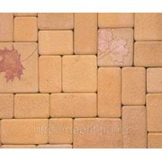 Искусственный камень ФОРЛЭНД Брусчатка кленовый лист фото