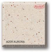 A209 Aurora фото
