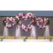 фото предложения ID 2264586