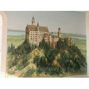Роспись стены Neushwanstein Fussen Germany фото