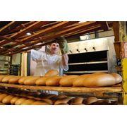 Хлебопекарная промышленность фото
