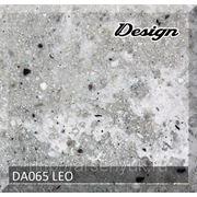 DA065 Leo фото