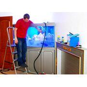 Обслуживание аквариума фото