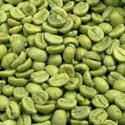 Зеленого кофе экстракт 10% кофеин, 10% хлоргеновая кислота фото