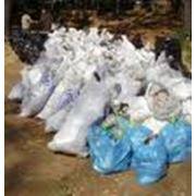 Вывоз мусора. фото