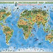 Детские географические карты фото
