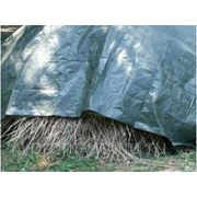 "Тент ""Тарпаулин"" 10м х 15м, 120 г/м2, зелёный фото"