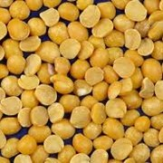 Горох желтый колотый фото