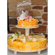 Торт на заказ фото