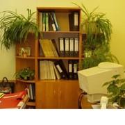 Шкаф для документов «Ш-2р» фото