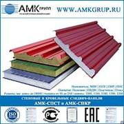 Трехслойная металлическая стеновая сэндвич-панель 60мм с МВУ фото