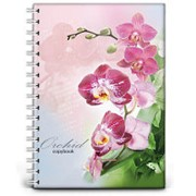 Бизнес-тетрадь 120л,кл,А4,Орхидея,гребень,глянц.ламинир(120-8106) фото